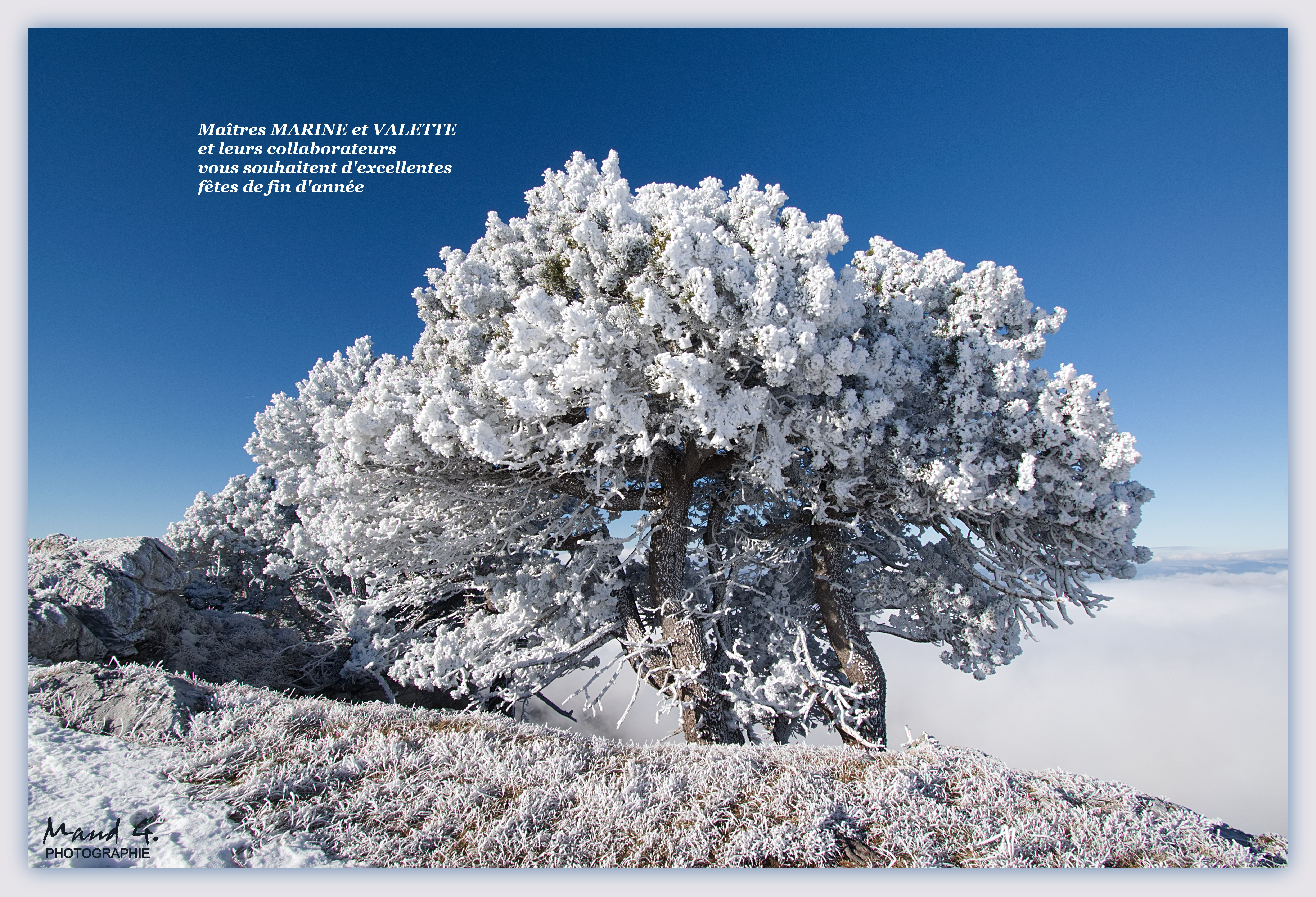 https://valette-et-marine.notaires.fr/wp-content/uploads/2019/12/vue-neige-jpg.jpg